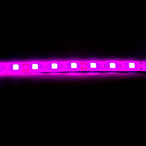 pink led motorcycle lights